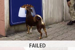 failed-